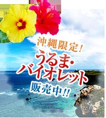 沖縄限定!(うるま・バイオレット)販売中!!
